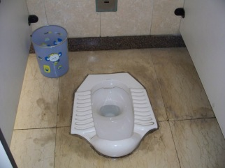 Chinese toilet Exhibit A