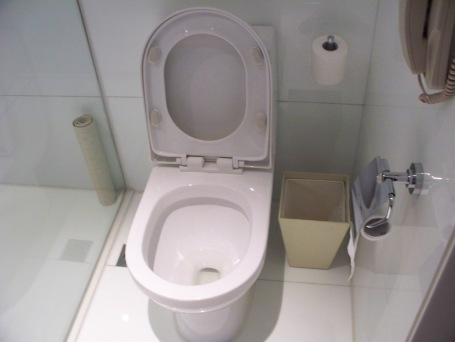 Five-star hotel toilet