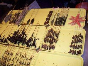 bugs on stick