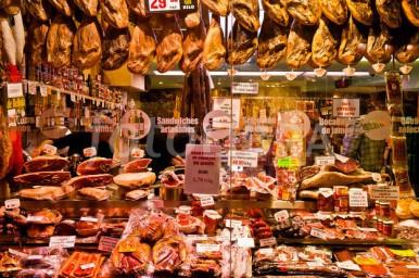 Museum of Ham